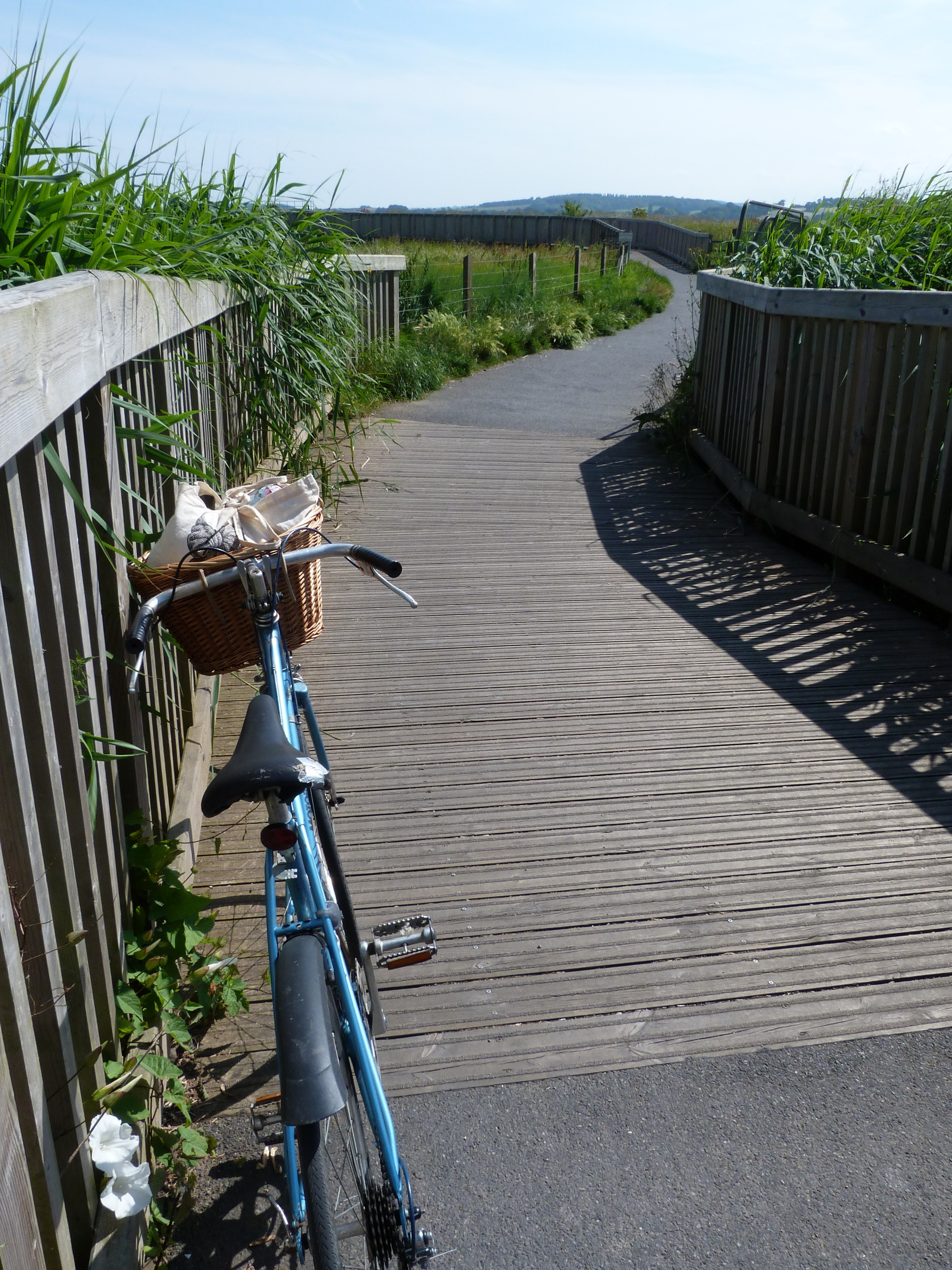 The Exe Estuary Trail Visit South Devon