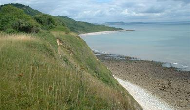 Axmouth to Lyme Regis (English Nature)