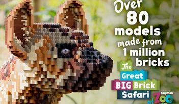 The Great Big Brick Safari at Paignton Zoo
