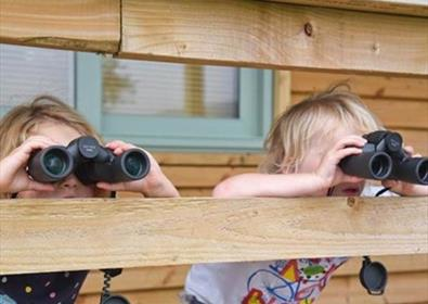 Bird watching at Seaton Wetlands
