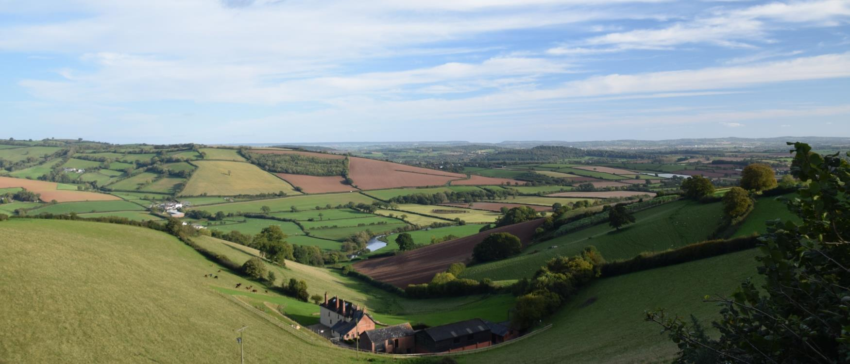 Countryside around Crediton