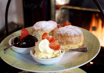 Best Places to Have Cream Tea in South Devon