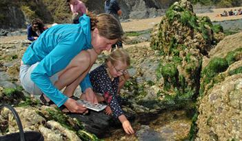 Spring tide rockpooling and Easter egg-case hunt