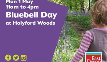 Bluebell day
