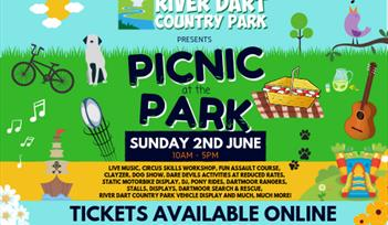 Picnic at the Park poster