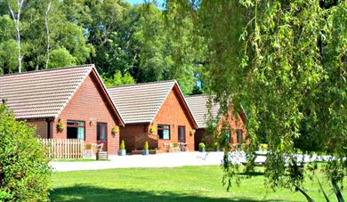 Alpine Park Cottages