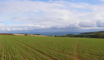 Fields and the Sea from Coleridge Cross