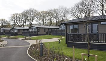 Hawkchurch Holiday Park Resort & Spa