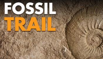 May Half Term Fun at Kents Cavern (including Fossil Trail)