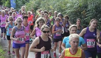 Newton Abbot Ladies 10k
