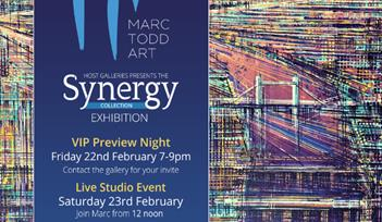 'Synergy' Exhibtion by Marc Todd