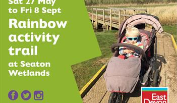 Rainbow activity trail
