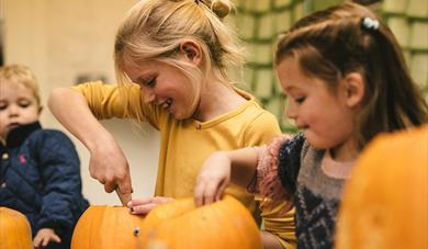 Children enjoy carving spooky pumpkins for Halloween at The Donkey Sanctuary