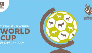 Who will lift the trophy in The Donkey Sanctuary World Cup?