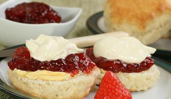 Cream Tea Yoga