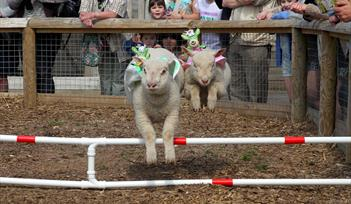 Easter Holiday Fun at World of Country Life!