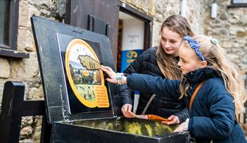 Girls enjoy Golden Carrot Hunt at The Donkey Sanctuary