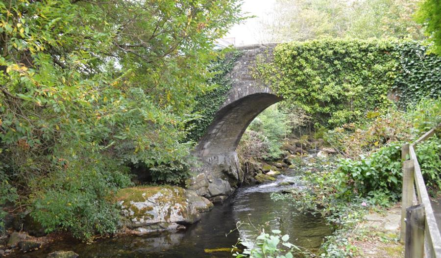 Ivybridge, Dartmoor