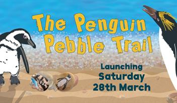 The Penguin Pebble Trail at Living Coasts