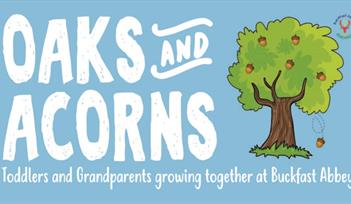 Oaks and Acorns