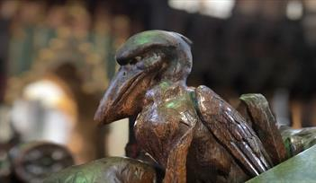 Birds of Exeter Cathedral Tour