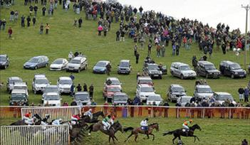 Mid Devon Point to Point at Powderham Castle