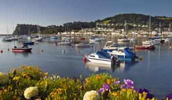 Shaldon Harbour